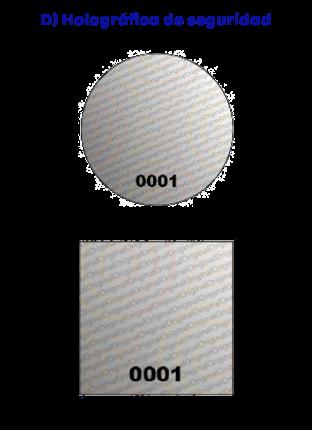 dcontrol holografica de seguridad
